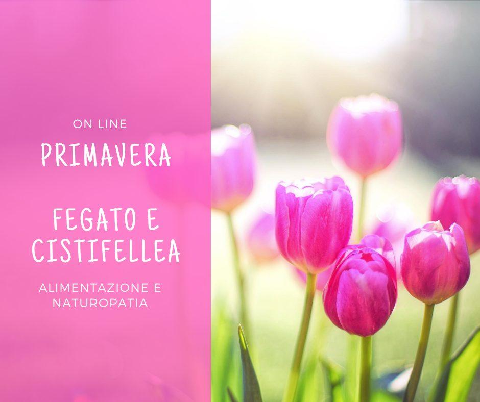 masterclass fegato e cistifellea Leslye Pario
