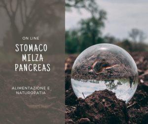 masterclass stomaco milza pancreas Leslye Pario
