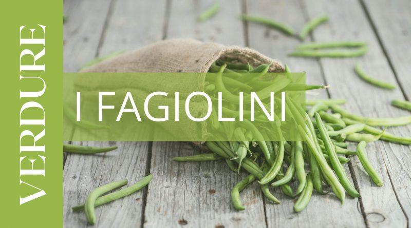 FAGIOLINI